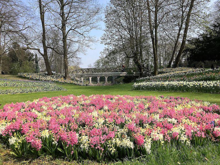 Floralia Brussels | Kasteel van Groot-Bijgaarden | Groot ...